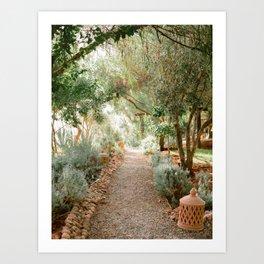 Botanical paradise | Morocco travel photography Art Print