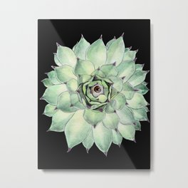 Sempervivum Eye Metal Print