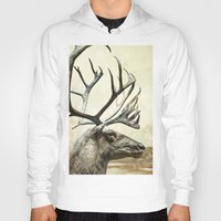 reindeer Hoodies featuring Reindeer by ZenzPhotography
