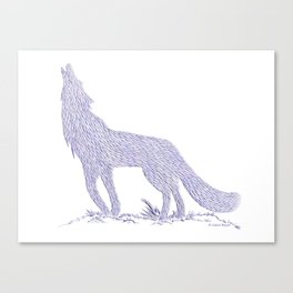 Coyote CREYES Canvas Print