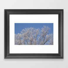 Frosty Beauty Framed Art Print