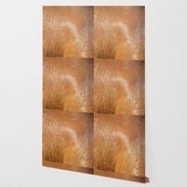 Horse Hide rustic decor Wallpaper
