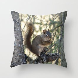 Soldotna Red Squirrel Throw Pillow