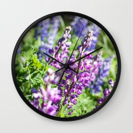Field of Lupines Photography Print Wall Clock
