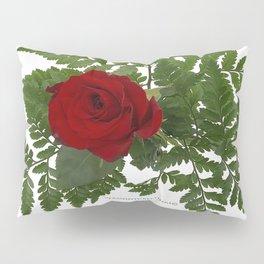 Rose in Winter Pillow Sham