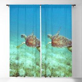 Watercolor Turtle, Green Turtle 05, St John, USVI Blackout Curtain