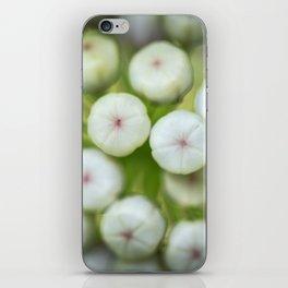 Wht-flowered Milkweed iPhone Skin