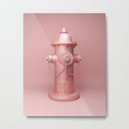 Fire fire-hydrant Metal Print