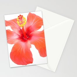 Red Hibiscus Vector Isolated Stationery Cards