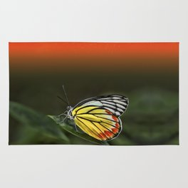 Butterfly Staring at Sunset Rug