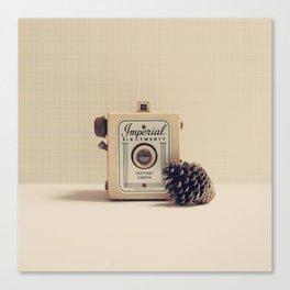 Retro Camera and Pine Cone Canvas Print