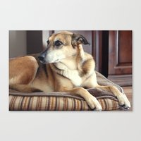 copper Canvas Prints featuring Copper by Irène Sneddon