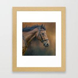 Horse portrait Framed Art Print