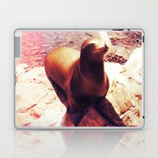 Seal Isn't a Man Laptop & iPad Skin
