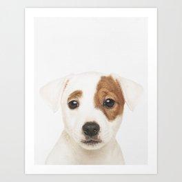 Jack Russell Puppy Art Print