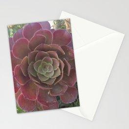 Aeonium Stationery Cards
