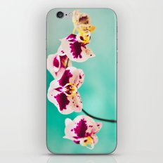 Orchids for an office lobby iPhone & iPod Skin