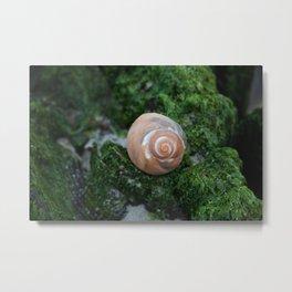 Shell on Moss Metal Print