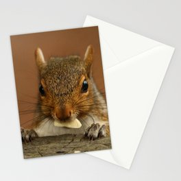 My Treat Stationery Cards