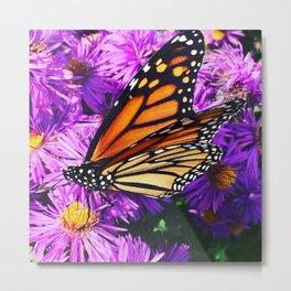 Monarch Butterfly on Flowers Metal Print