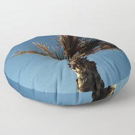 Palmetto in Lacanau-palms,drupe,sabal,swamp,cabbage,abanico,drupa,palmera Floor Pillow