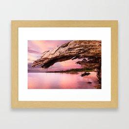 Naval Live Oaks Sunset I Framed Art Print