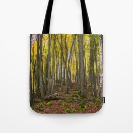 Autumnal Forest Tote Bag
