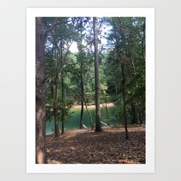 forest lagoon view Art Print