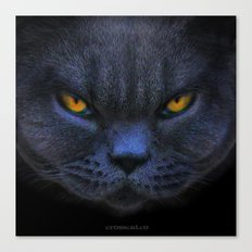 Very Cross Cat Canvas Print