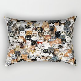 Catmina Project Rectangular Pillow