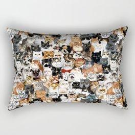 Catmina Project Rectangular Pillow