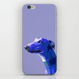 Greyhound. Blue dog Pop Art portrait. Hunting dog. iPhone Skin