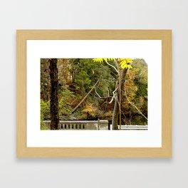 Bridge Of Color  Framed Art Print