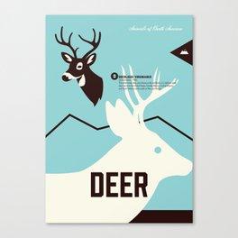 Wildlife of North America: Deer Canvas Print