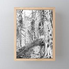 On the Trail Framed Mini Art Print