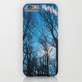 The blue sky and the tall trees iPhone Case