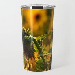 Sunflower Fields at Sunset Travel Mug