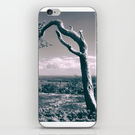 PIne in the mountains iPhone Skin