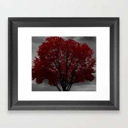 Red Tree, Grey Sky Framed Art Print