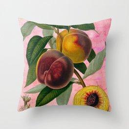 Vintage Botanical Collage, Bradford Peach Throw Pillow