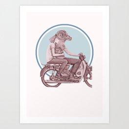 Menagerie Sheep & Ram Art Print