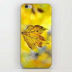 Yellow leave in yellow bokeh iPhone & iPod Skin