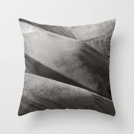 Painted Hills Monochrome Throw Pillow