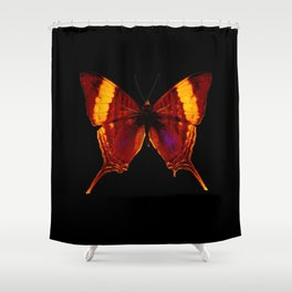 Butterfly - Vibrant Glow - Orange Brown Yellow Black Shower Curtain