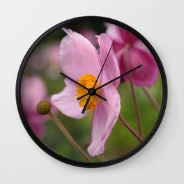 Pink Anemone Wall Clock