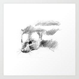 Totem Spotted skunk (Spilogale) Art Print