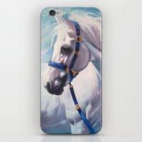 horse iPhone & iPod Skins featuring Horse by Slaveika Aladjova