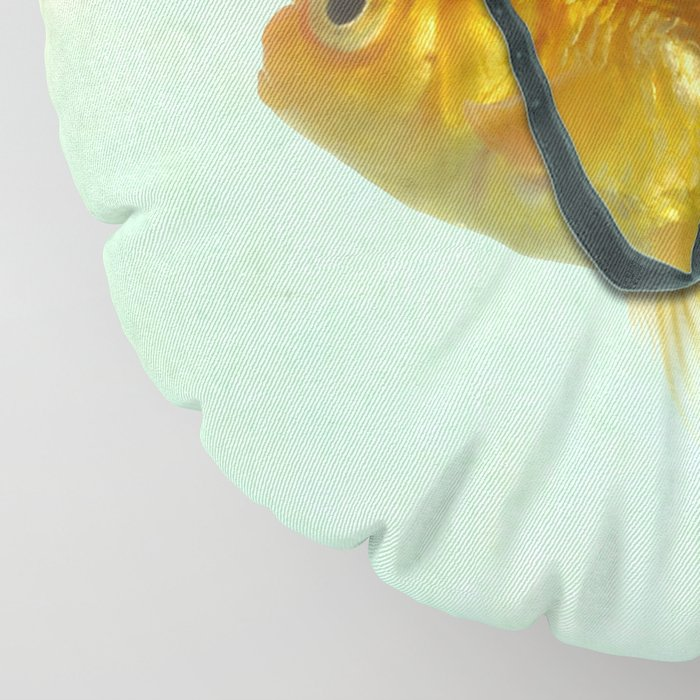 Brilliant DISGUISE - Goldfish with a Shark Fin Floor Pillow