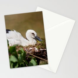 Ciconia ciconia child sitting Stationery Cards
