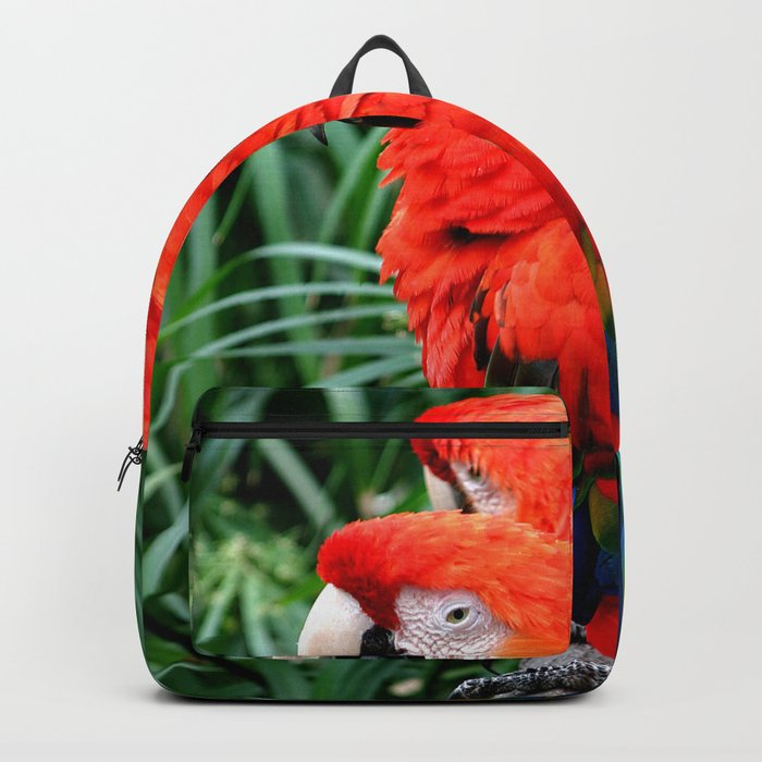 Scarlet Macaws Backpack